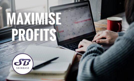 maximise profits